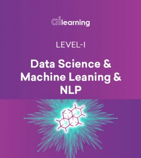 Data Science, Machine Learning and NLP (Inaugural offer, valid for few days only)